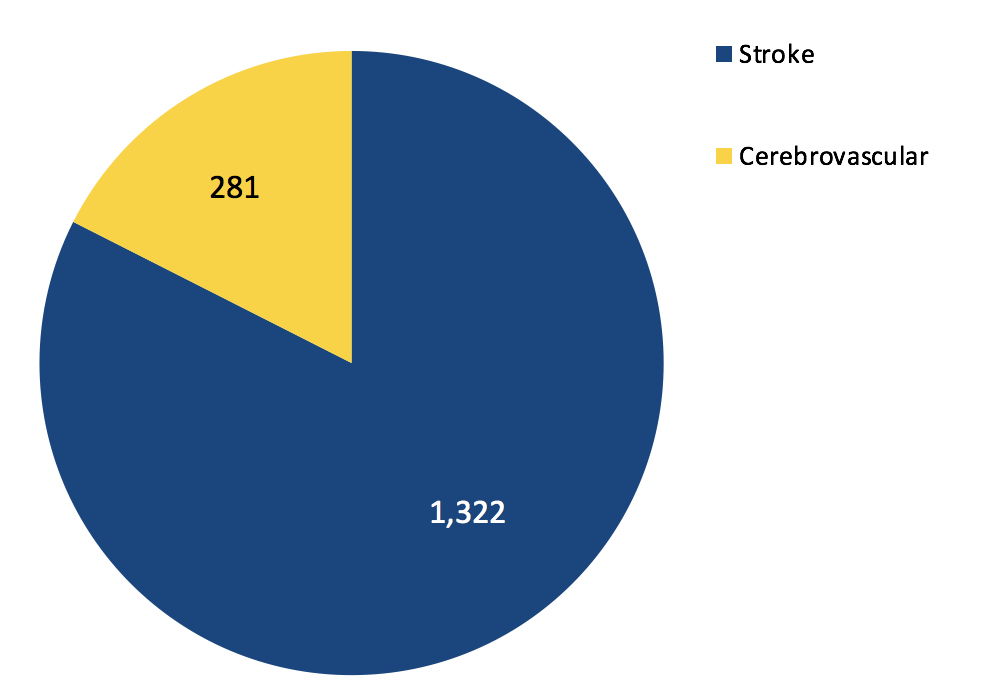 Total Stroke and Cerebrovascular Volume
