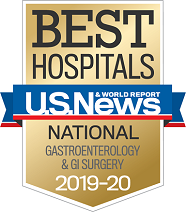 U.S. News and World Report Best Hospitals Badge - Gastroenterology & GI Surgery